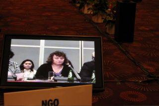 доклад Элеоноры Гройсман на ОБСЕ
